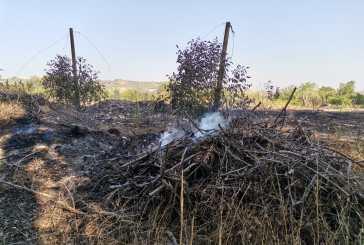 Incendio a Paglieta, l'intervento della Protezione civile di Casalbordino