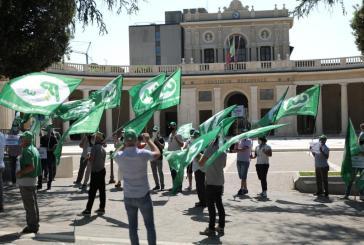 Abruzzo, emergenza cinghiali: la protesta degli agricoltori in Regione