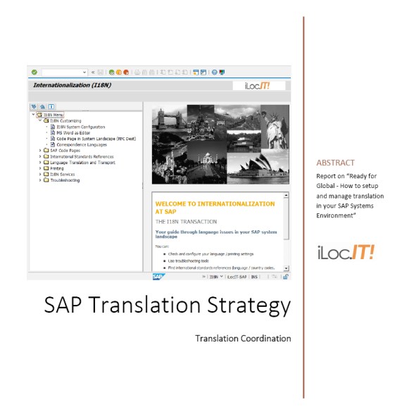 SAP Translation Strategy