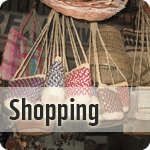 what-to-do-shopping