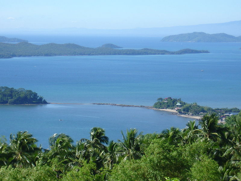 View_to_San_Dionisio_Iloilo_from_top_of_Mount_Opao