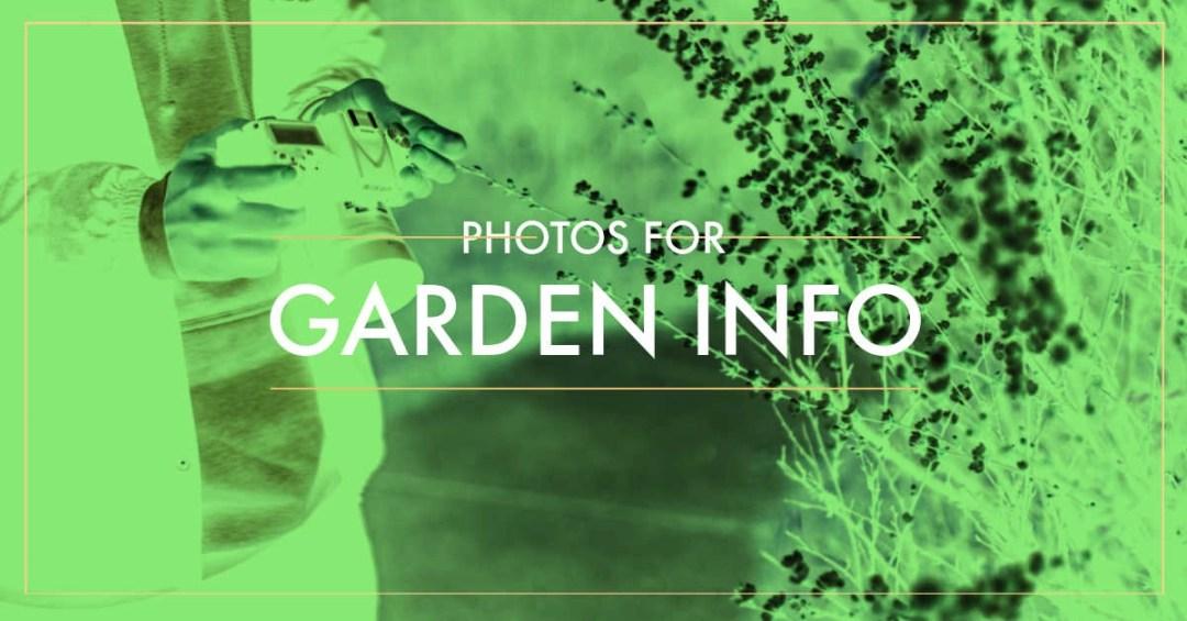 take photos of plants