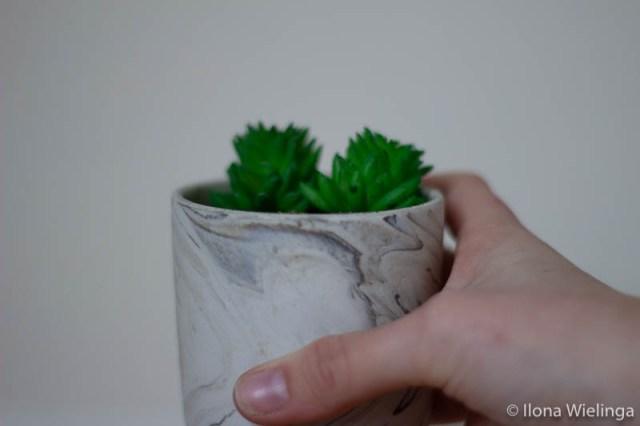 ontspullen 3 cactus in pot marble