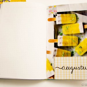 ijsjes bullet journal augustus 1