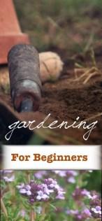 beginning gardening