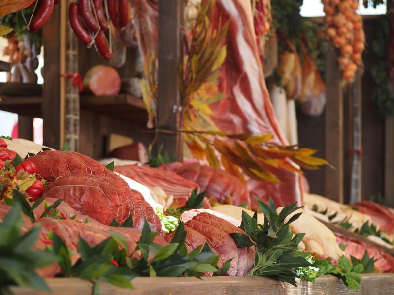 expo maso