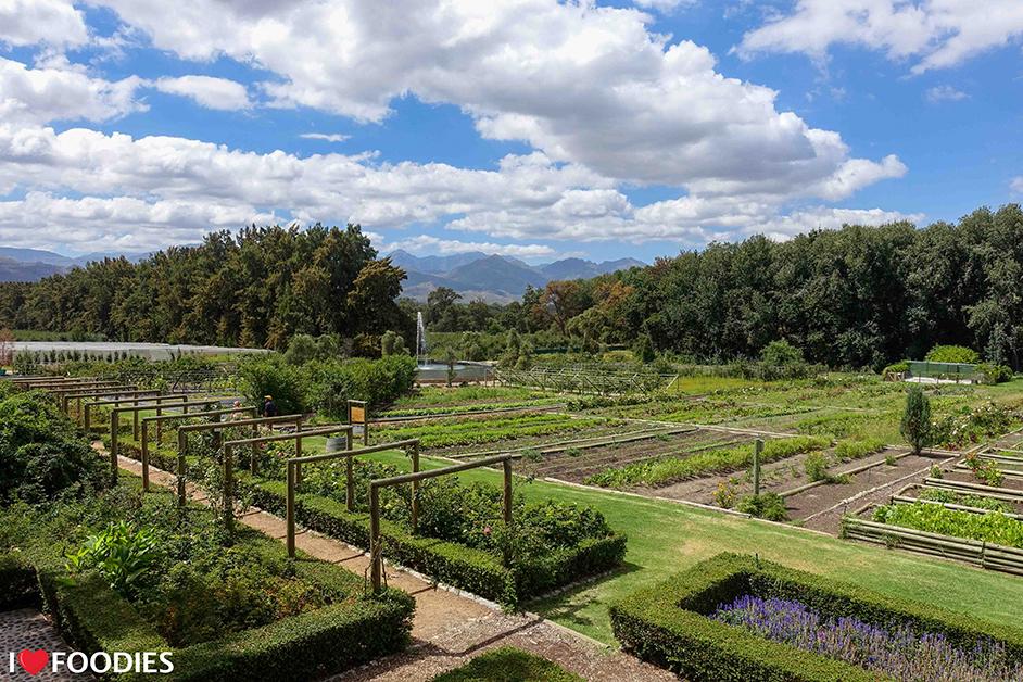 Boschendal Werf herb & vegetable garden