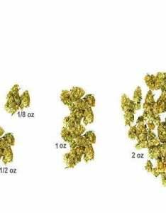 Marijuana pounds and kilograms also in grams eighths quarters halves ounces kilo   rh ilovegrowingmarijuana