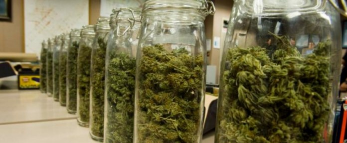 Drying and curing weed