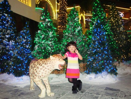 """The leopard is said to be the the smallest of the four """"big cats"""" in the genus Panthera, the other three being the tiger, lion, and jaguar. (from Wikipedia)"""
