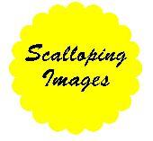 Scalloping - Video 17