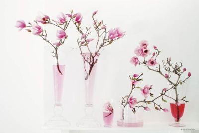 vases+and+flowers-1