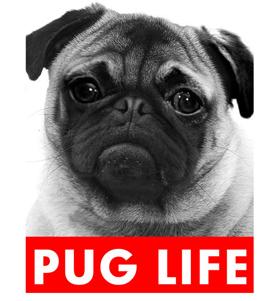 Pug Life T Shirt Adult Unisex I Love Pugs