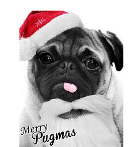 Santa Pug T Shirt Adult Unisex I Love Pugs