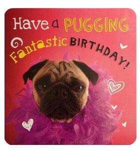 Puggin Pug Birthday Card I Love Pugs