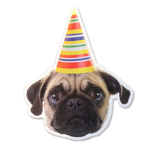 Party Pug Postcard For Any Occasion I Love Pugs