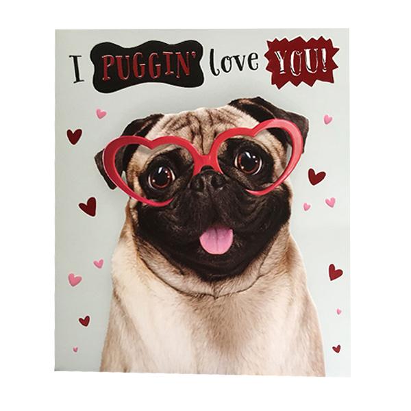 Cute Pug Valentines Card I Love Pugs