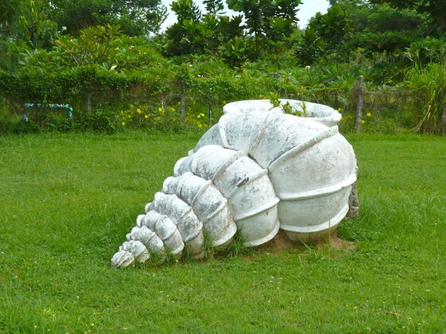 shell museum yard art