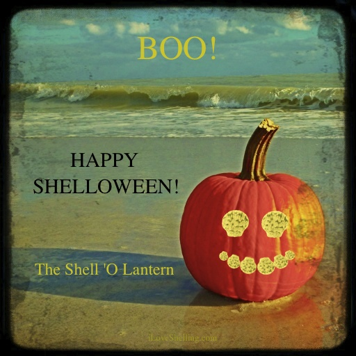 Happy Shelloween!