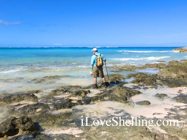 beach combing cat island bahamas clark rambo