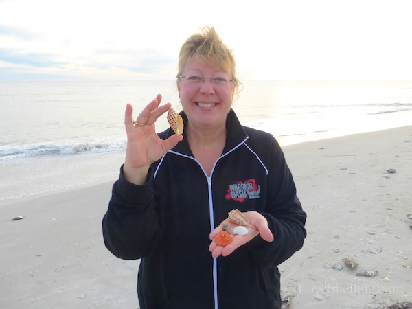 So Many Rare Shells Found On Sanibel This Week
