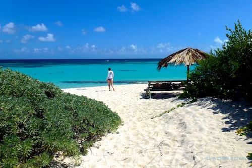 BVI British Virgin Island beach path to seashells