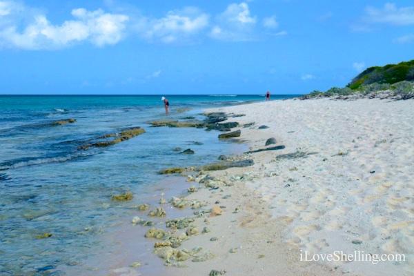 beach combing British Virgin Island BVI