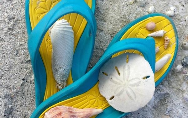 Flip Flop Between Sand Dollars and Angel Wings