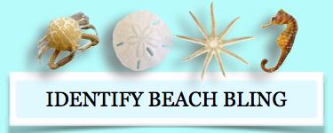 identify beach bling