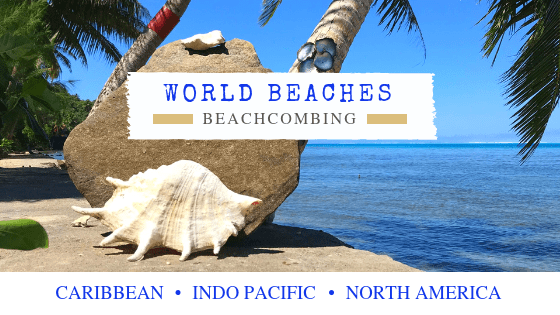 World Beachcombing Destinations