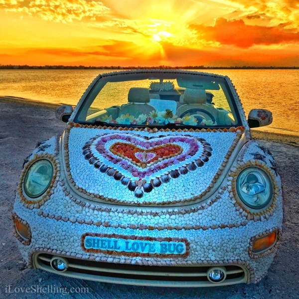 Shellbatical over Shell Love Bug