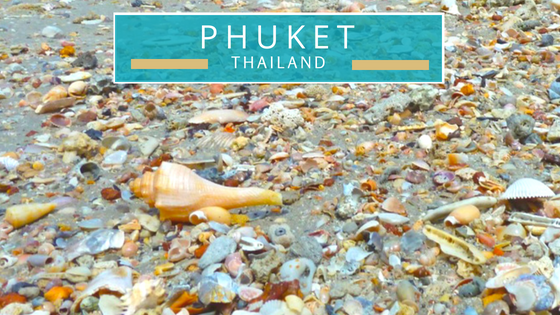 Phuket Thailand seashells beach combing