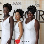 Dreamgirls verkoopt 50.000e ticket