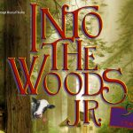 Auditie-oproep:  'Into the wood jr'