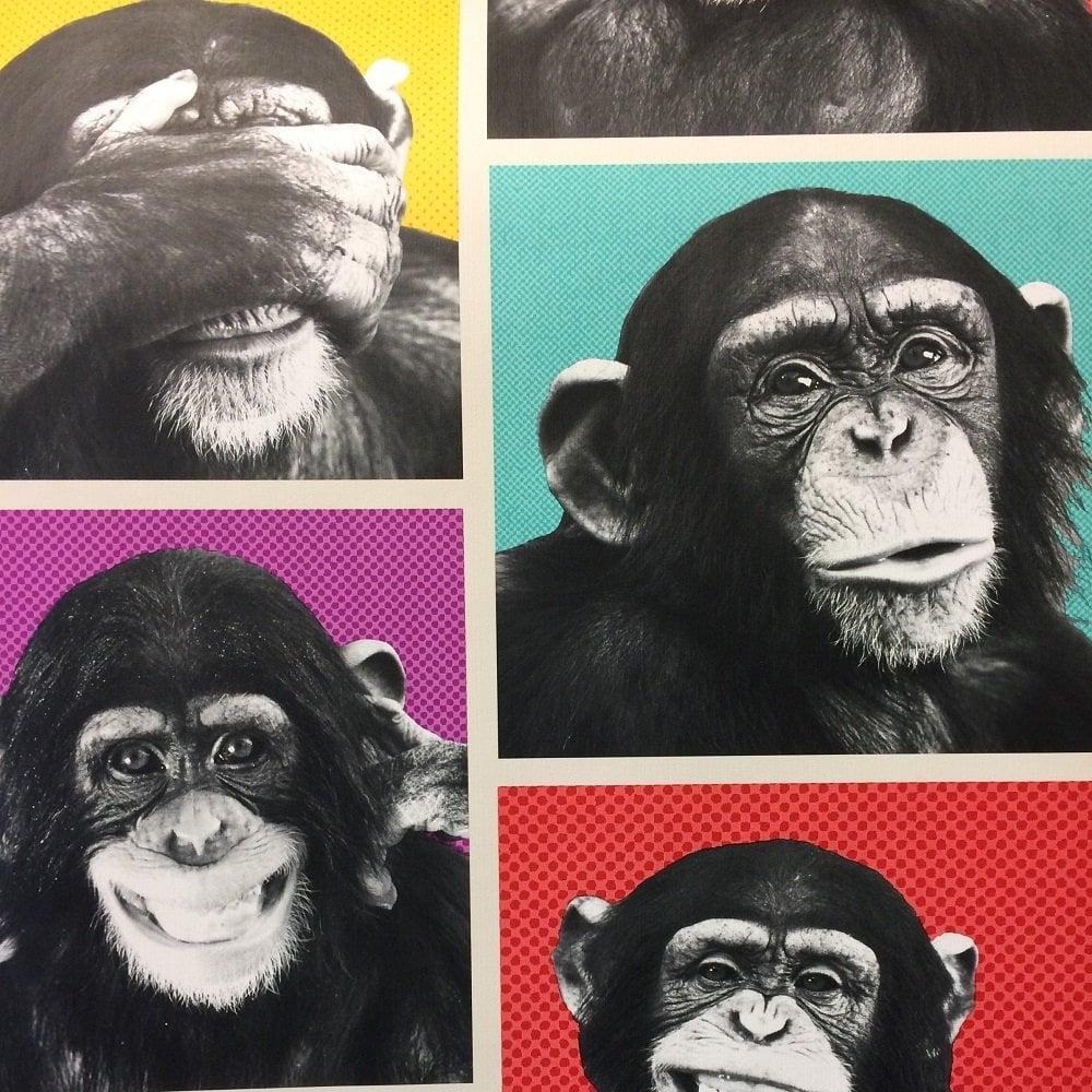 Girl Nursery Wallpaper Uk Muriva Cheeky Chimps Wallpaper Multicoloured 102560