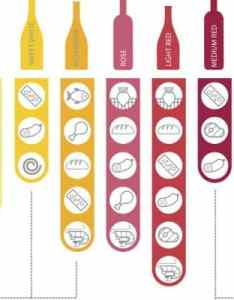 Wine tasting guide chart also the only you  ll ever need  love rh ilovewine