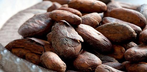 Dalle cabosse al cioccolato solido