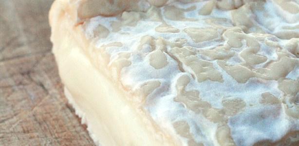 Fattoria Ma'falda – Caprino a crosta fiorita