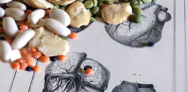 La soia, un legume sui generis (seconda parte)