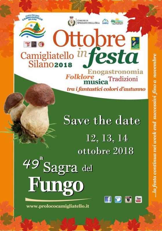 sagra_del_fungo_camigliatello_silano