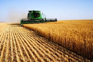 La Regione sarda a Nuraminis per discutere di Agricoltura e sviluppo rurale