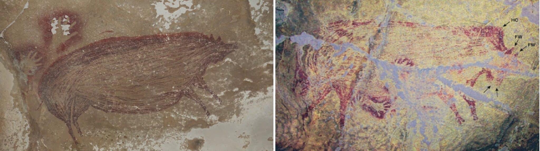 Un maiale di 45mila anni: è la più antica opera d'arte umana mai scoperta