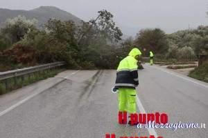 vento-forte-albero-caduto