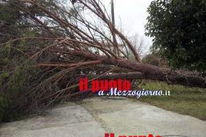 vento-forte-cassinate-02