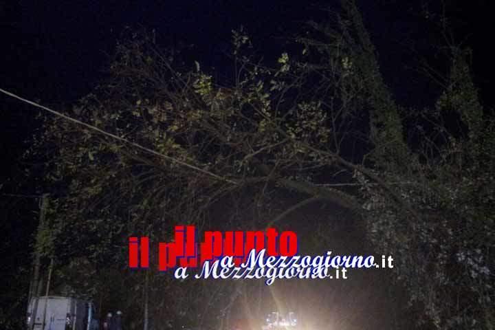 Maltempo, alberi divelti e blackout in più zone del frusinate