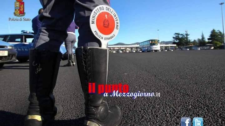 Cinque cuccioli di cane salvati dalla polizia Stradale a Frosinone