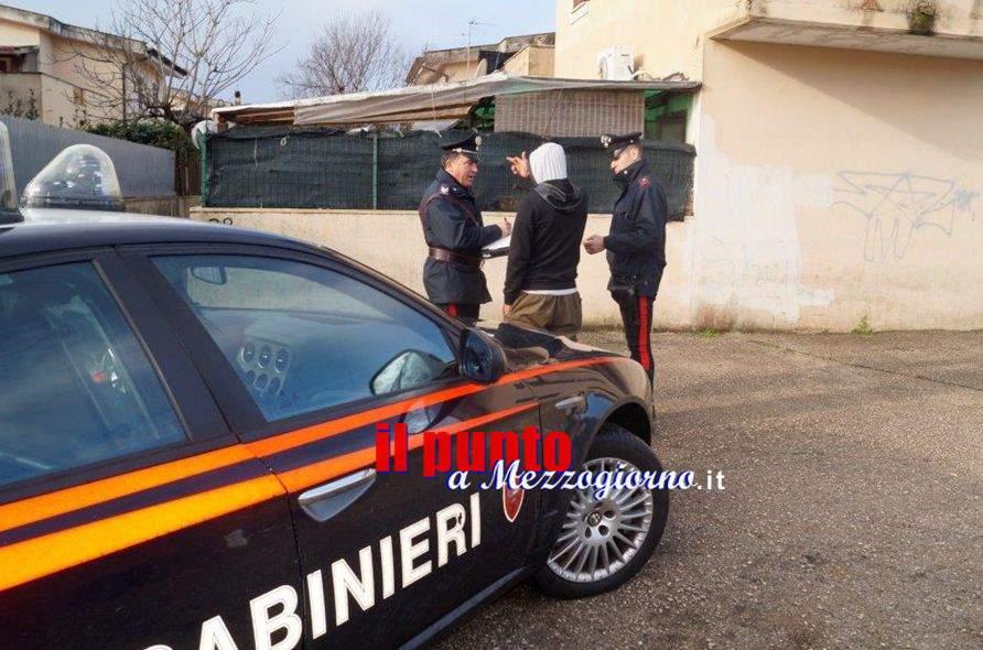 Hanno lasciato che il cane morisse di fame e di sete, denunciata coppia a Trevi nel Lazio