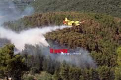 incendio-mignano-monte-rotondo-07