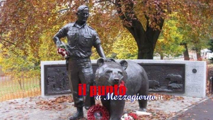 Cassino avrà il Monumento all'Orso polacco Wojtek