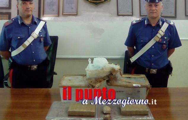 """Un bosco """"stupefacente"""" ad Alatri, carabinieri trovano seppelliti 4,5 chili di cocaina"""